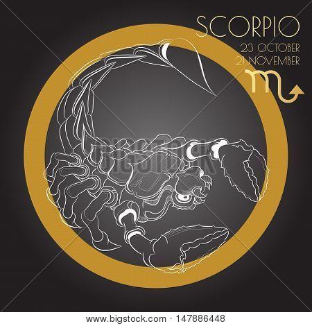 Hand drawn line art of decorative zodiac sign Scorpio on black background. Horoscope vintage card in zentangle style.