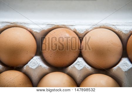 Chiken Eggs Packed In A Box.