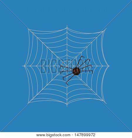 Spider on the web illustration on the blue background. Vector illustration