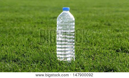 picture of a plastic water bottle on a green grass