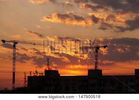 Evening city decline against construction a cranes