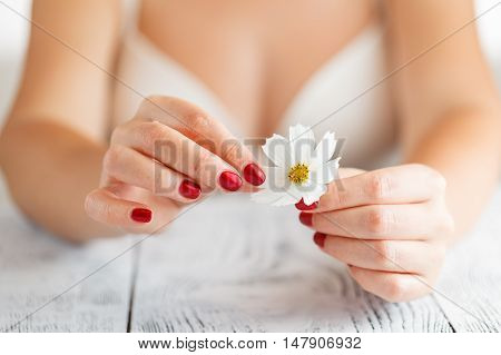 Woman With A White Daisy Tearing Petals Off.