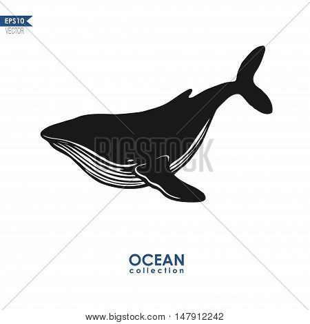 humpback whale isolated on white, vector whale silhouette