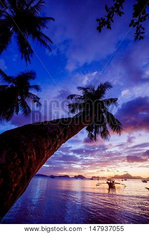 Sunset with palm and boat in the Palawan Island in the Philippines.