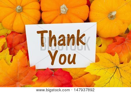 Thank You Message Some fall leaves and pumpkins with text Thank You on a greeting card