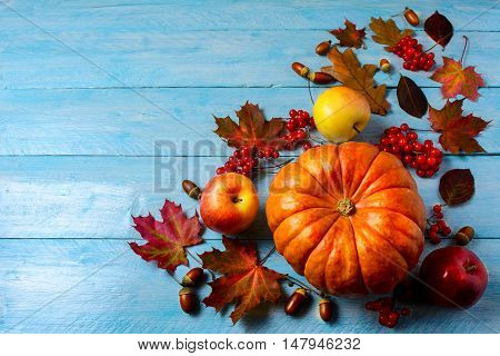 Pumpkin apples berries acorns and fall leaves on blue background copy space. Thanksgiving background with seasonal vegetables and fruits