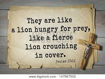 TOP-1000.  Bible verses from Psalms.They are like a lion hungry for prey, like a fierce lion crouching in cover.