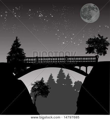 illustration with bridge above precipice at night