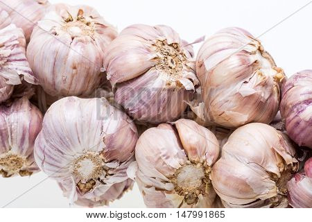 String of garlic isolated on white background