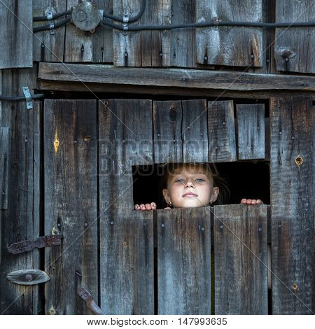 Little girl looks out of the shed through a small window.