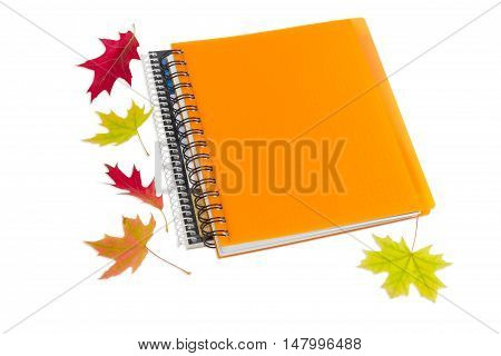 Two paper notebooks with spiral binding and few red and yellow autumn leaves on a light background