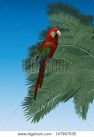 illustration with parrot and lush green palm tree foliage on blue background