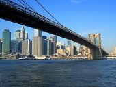 picture of brooklyn bridge  - Brooklyn bridge and financial district Manhattan New York - JPG
