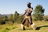 image of zulu  - african zulu dancer - JPG