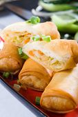 image of chinese menu  - chinese spring roll - JPG