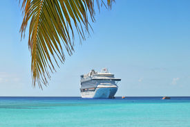 stock photo of cruise ship  - Palm tree and cruise ship in background in tropical island - JPG