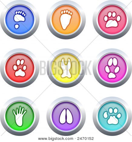 Animal Track Buttons