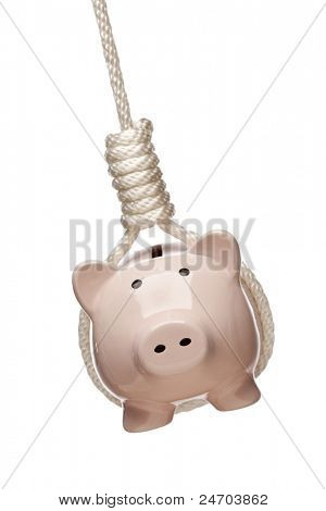 Piggy Bank Hanging in Hangman's Noose Isolated on a White Background.