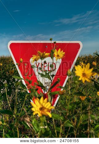 Yield Sign In Flowers