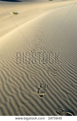 Footprints_Sand_Dune