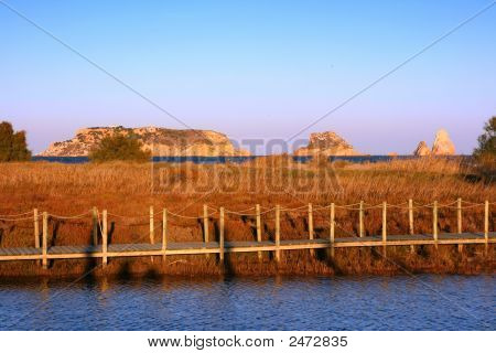 Marshlands In Estartit (Costa Brava, Spain)