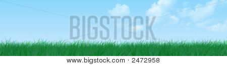 Blue Sky, Grass Banner