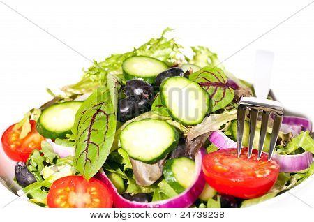 Fresh Mesclun Salad Close Up Horizontal