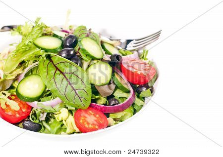Fresh Mesclun Salad With Tomato And Onion