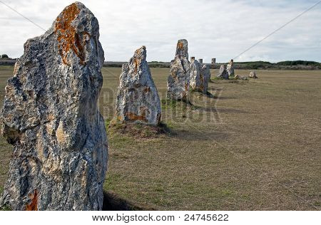 Menhirs in a row in a field