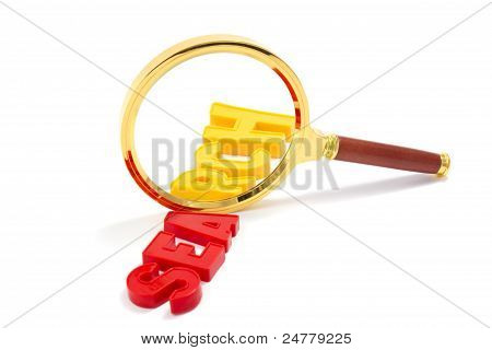 Magnifier With Word Search