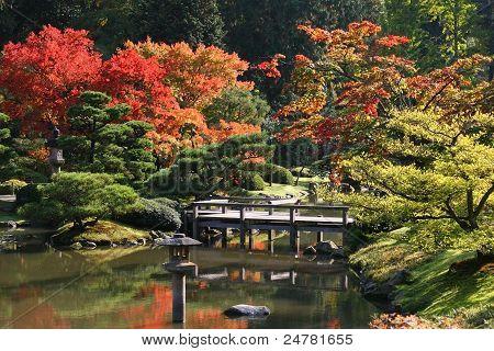 Arboretum, Japanese Garden #1