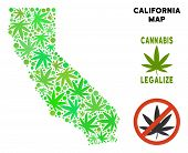 Royalty Free Cannabis California Map Composition Of Weed Leaves. Template For Narcotic Addiction Cam poster