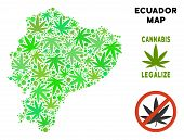 Royalty Free Cannabis Ecuador Map Composition Of Weed Leaves. Template For Narcotic Addiction Campai poster