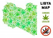 Royalty Free Cannabis Libya Map Mosaic Of Weed Leaves. Template For Narcotic Addiction Campaign Agai poster