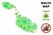 Royalty Free Cannabis Malta Island Map Collage Of Weed Leaves. Template For Narcotic Addiction Campa poster