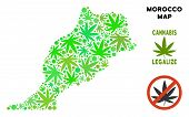 Royalty Free Cannabis Morocco Map Composition Of Weed Leaves. Template For Narcotic Addiction Campai poster