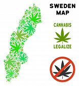 Royalty Free Cannabis Sweden Map Collage Of Weed Leaves. Concept For Narcotic Addiction Campaign Aga poster