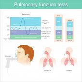 Pulmonary Function Tests. Testing For Volume Of Air In The Lungs During Breathe In And Exhaling Full poster