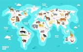 World Map With Animals. Earth Discovery Funny Kids Geography Vector Illustration. Animal Geography W poster