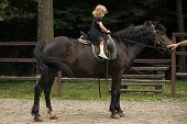 Equine Therapy. Girl Ride On Horse On Summer Day. Child Sit In Rider Saddle On Animal Back. Friend,  poster
