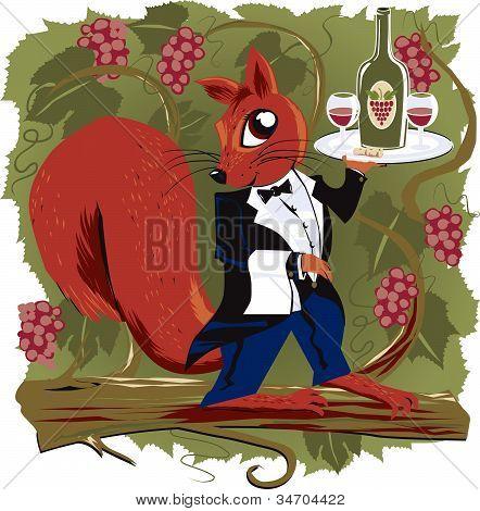 Vineyard Squirrel
