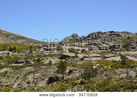 Rocky landscape with stones