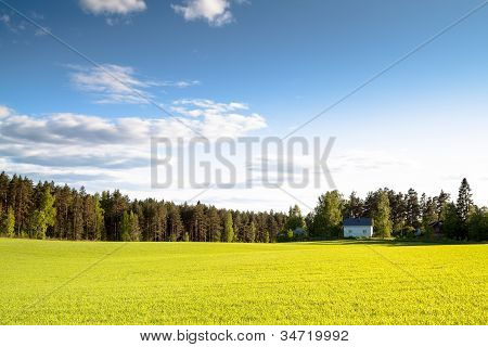 The house on a green field in a sunny day