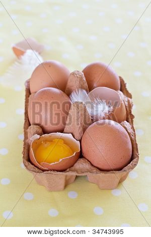 Eggs In A Tray On Yellow Dot Background