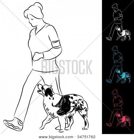 An image of trainer walking a border collie dog.