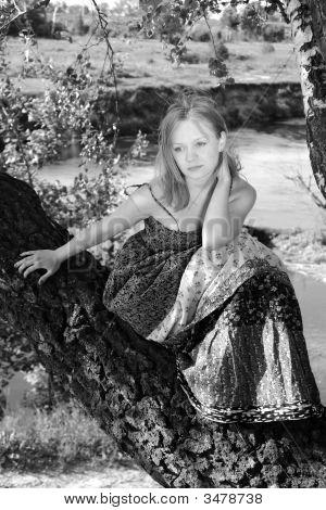 Girl On Birch