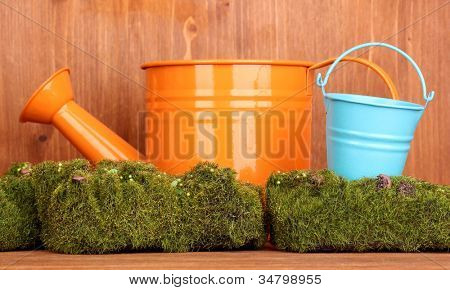 Green moss with watering can and metal bucket on wooden background