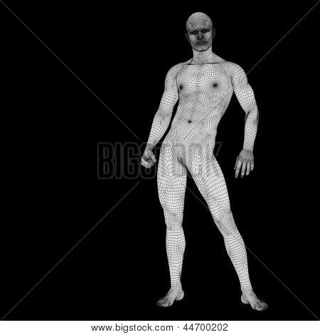 High resolution concept or conceptual 3d male or man standing over a black background as a metaphor for anatomy,body,biology,medicine,muscle,mesh,muscular,anatomical,science,education,sport or x-ray