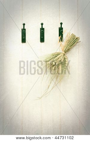 Grasses tied with raffia on hooks with textured background