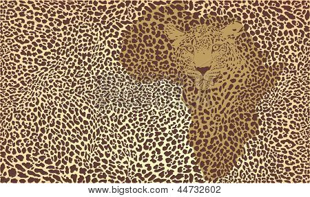 Background Of The African Jaguar.eps